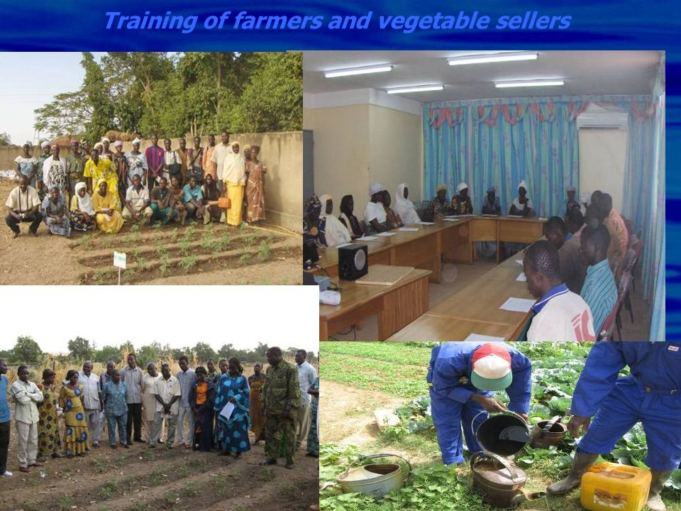 Training of farmers and vegetable sellers