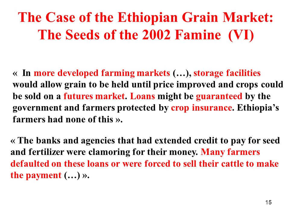 The Case of the Ethiopian Grain Market: The Seeds of the 2002 Famine (VI)