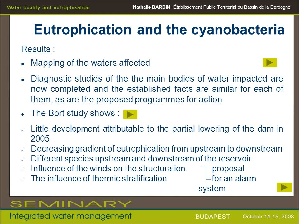 Eutrophication and the cyanobacteria