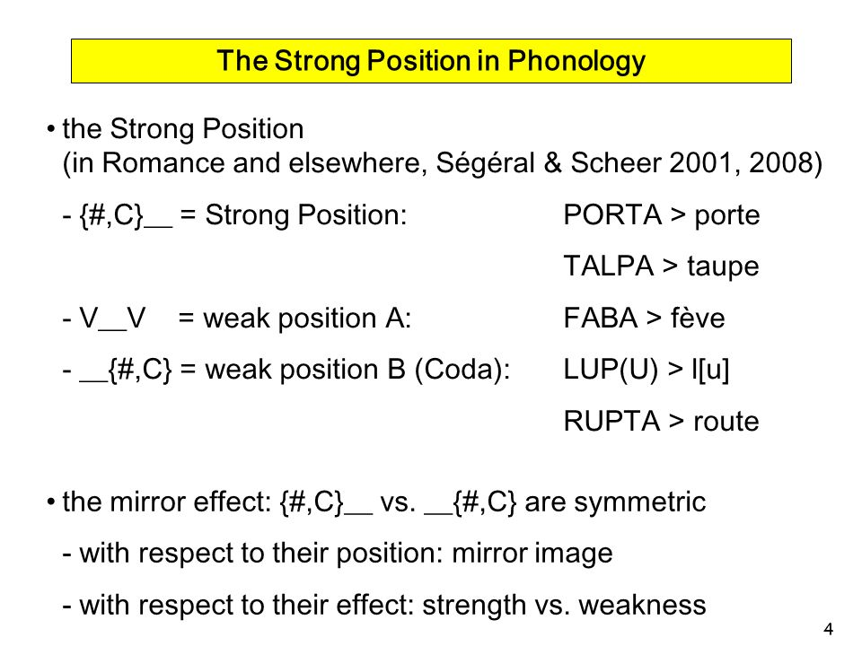 The Strong Position in Phonology