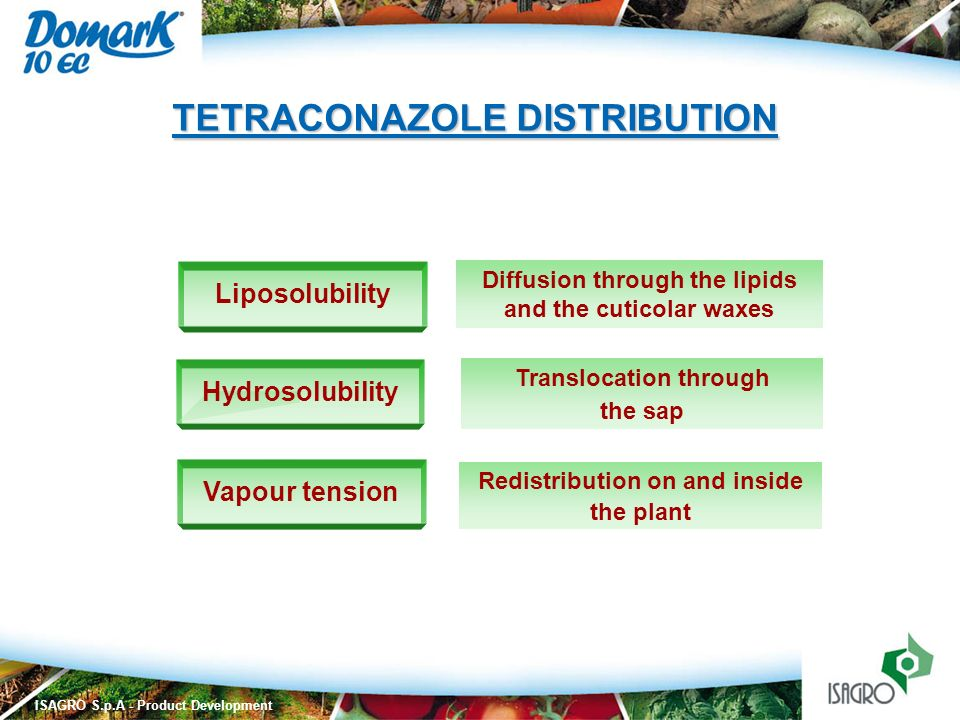 TETRACONAZOLE DISTRIBUTION