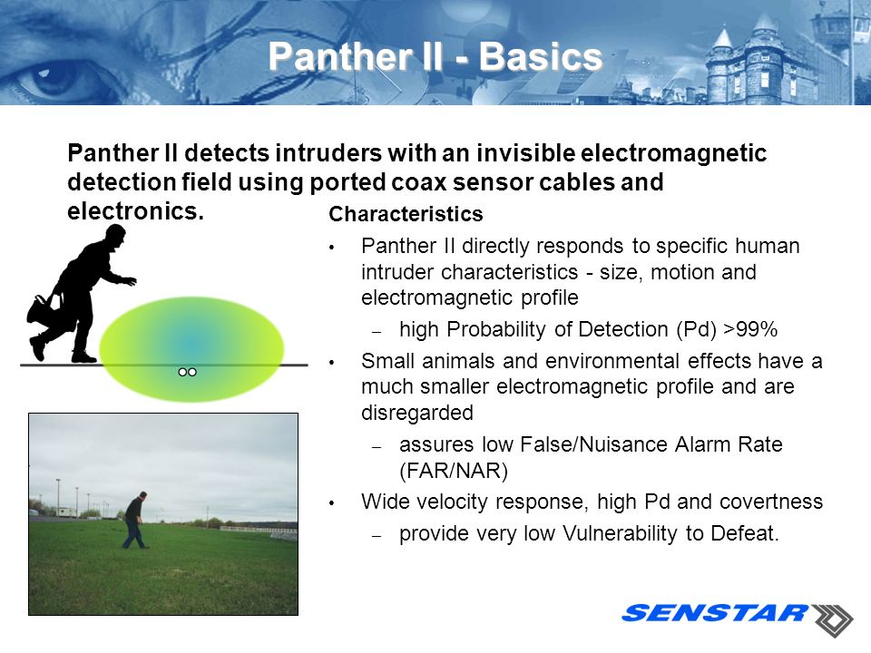 Panther II - Basics Panther II detects intruders with an invisible electromagnetic detection field using ported coax sensor cables and electronics.