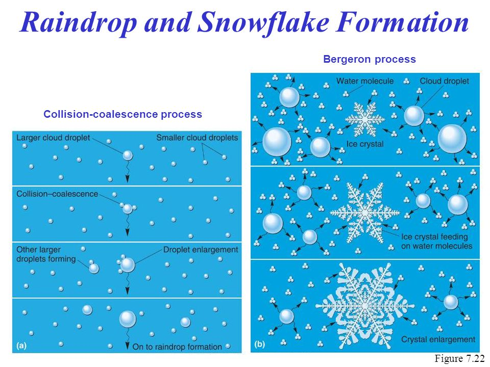 Raindrop and Snowflake Formation