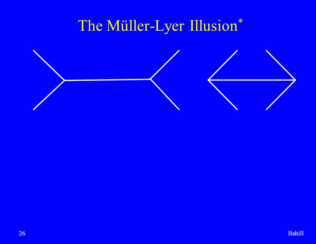 The Müller-Lyer Illusion*