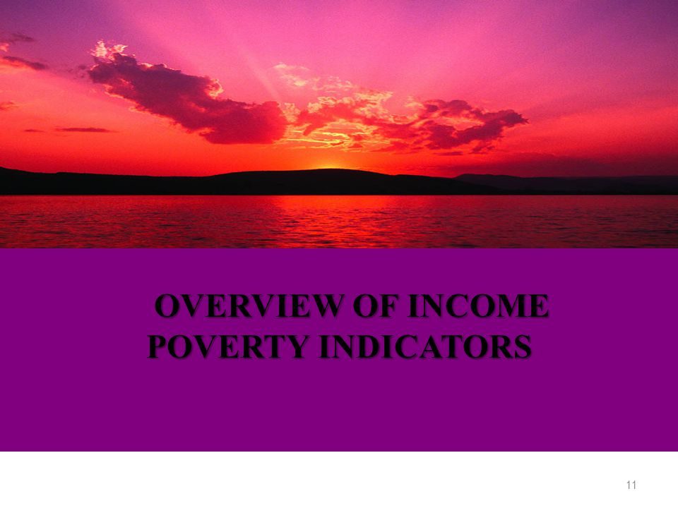 OVERVIEW OF INCOME POVERTY INDICATORS