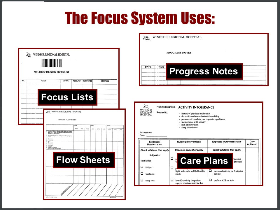 The Focus System Uses: Progress Notes Focus Lists Flow Sheets