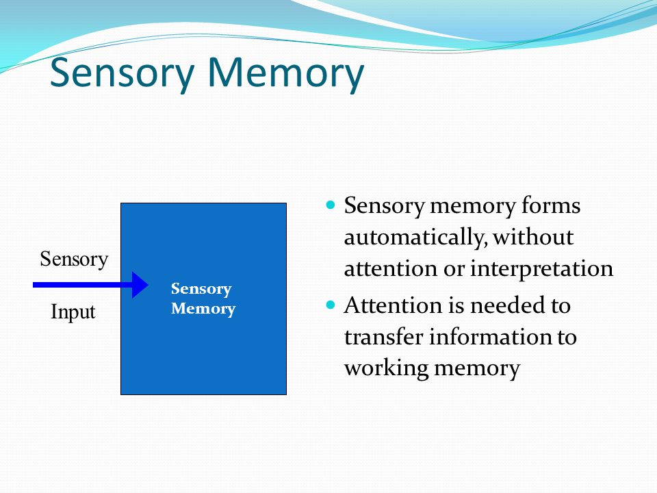 Sensory Memory Sensory memory forms automatically, without attention or interpretation.