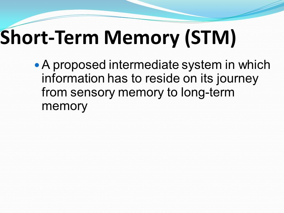 Short Term Memory : Chapter memory dec th ppt download