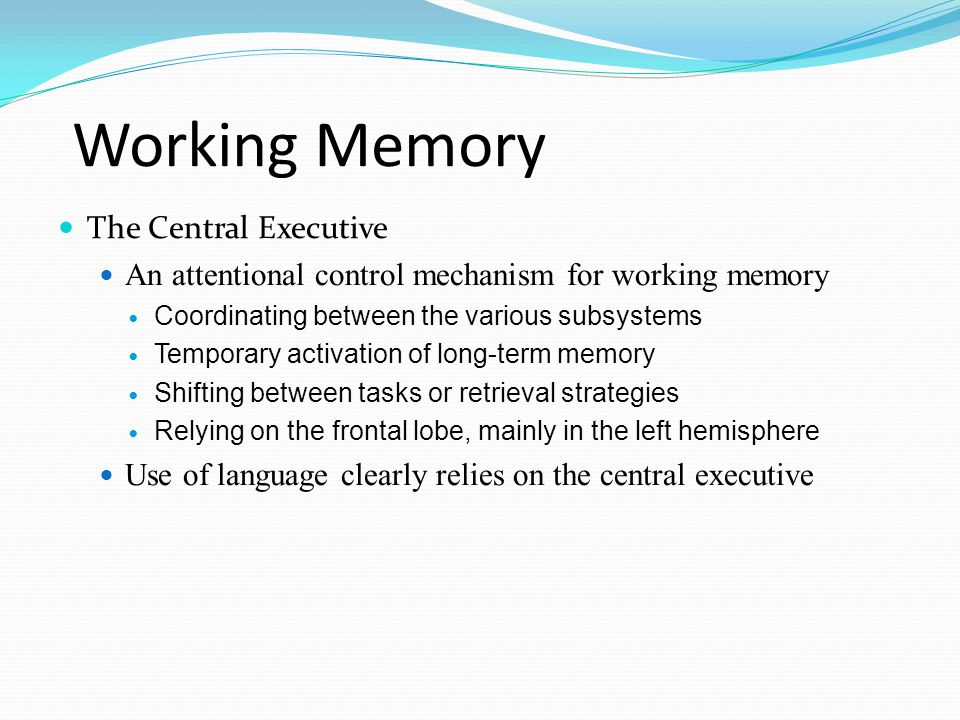 Working Memory The Central Executive