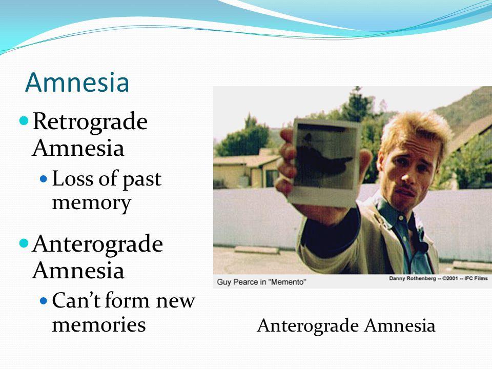 Amnesia Retrograde Amnesia Anterograde Amnesia Loss of past memory