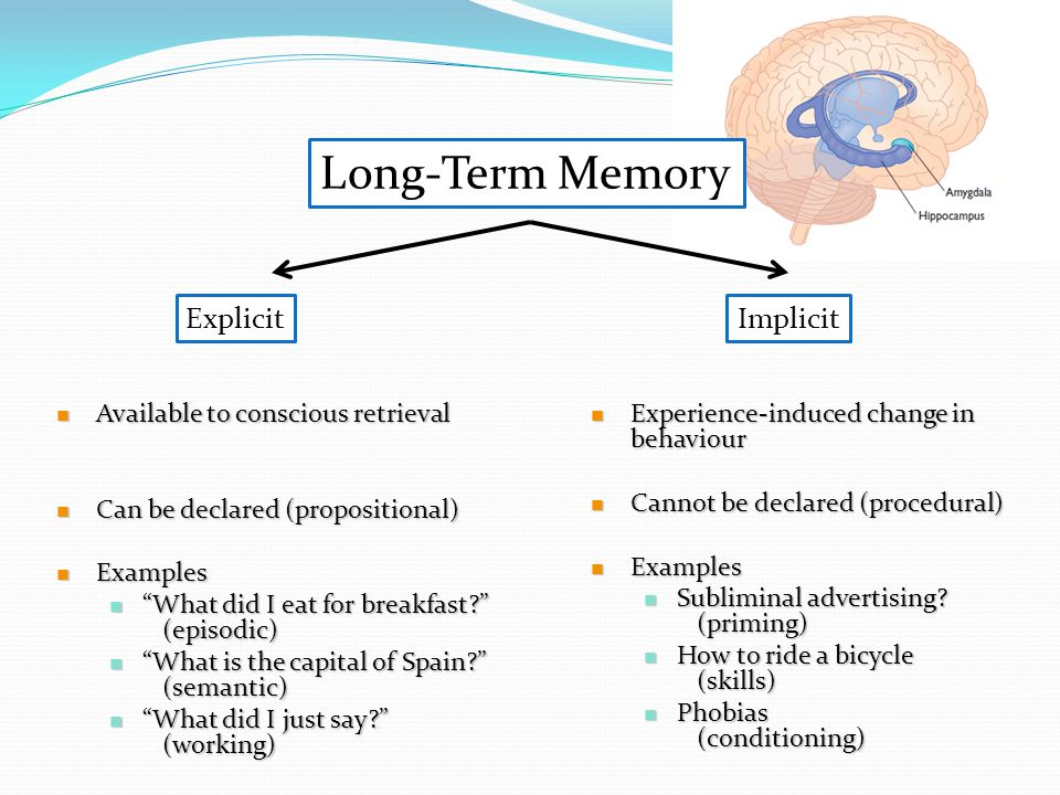 Procedural Long Term Memory Examples