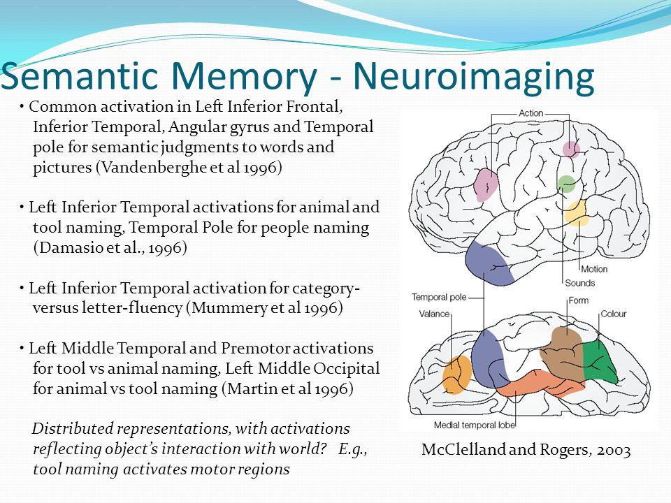 Semantic Memory - Neuroimaging
