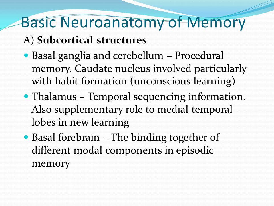 Basic Neuroanatomy of Memory