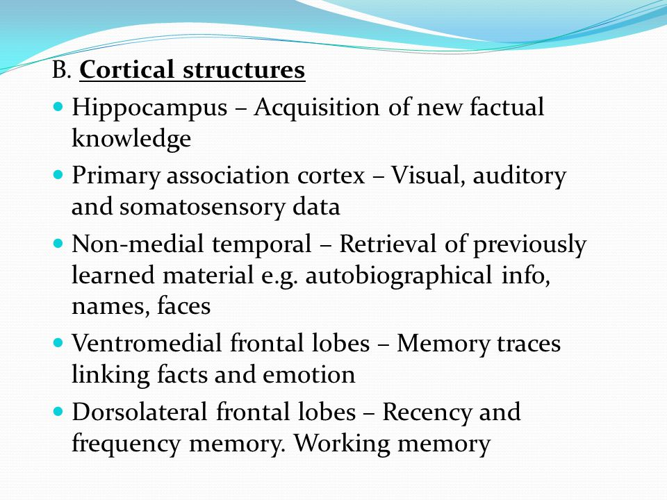 B. Cortical structures Hippocampus – Acquisition of new factual knowledge. Primary association cortex – Visual, auditory and somatosensory data.