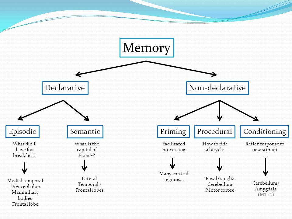 Memory Declarative Non-declarative Episodic Semantic Priming