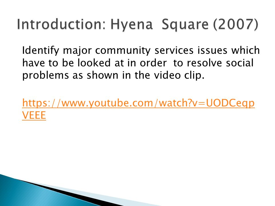 Introduction: Hyena Square (2007)