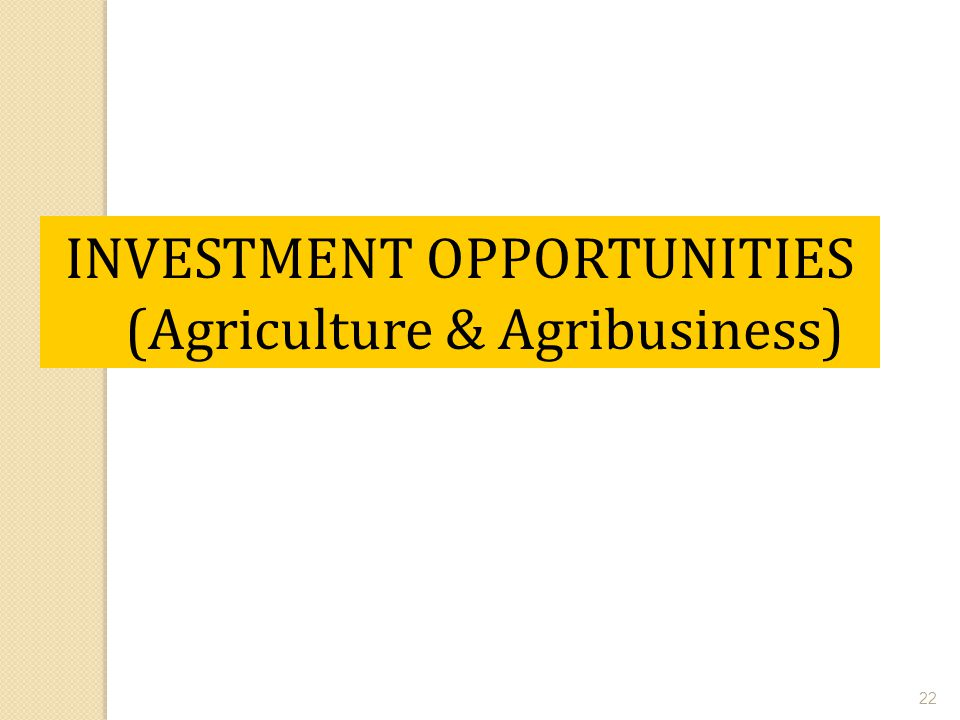 INVESTMENT OPPORTUNITIES (Agriculture & Agribusiness)