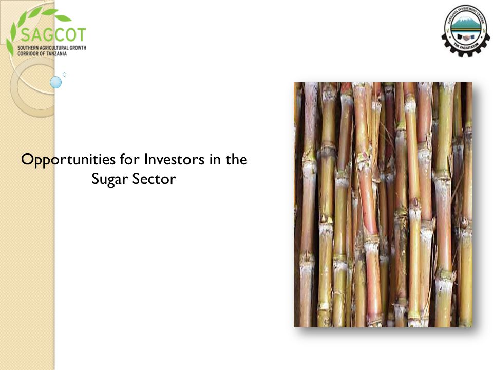 Opportunities for Investors in the Sugar Sector