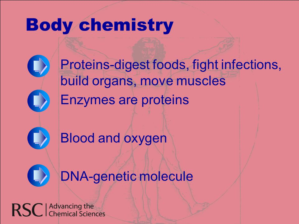 Body chemistry Proteins-digest foods, fight infections, build organs, move muscles. Enzymes are proteins.