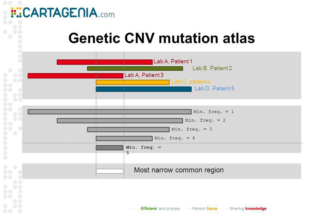 Genetic CNV mutation atlas