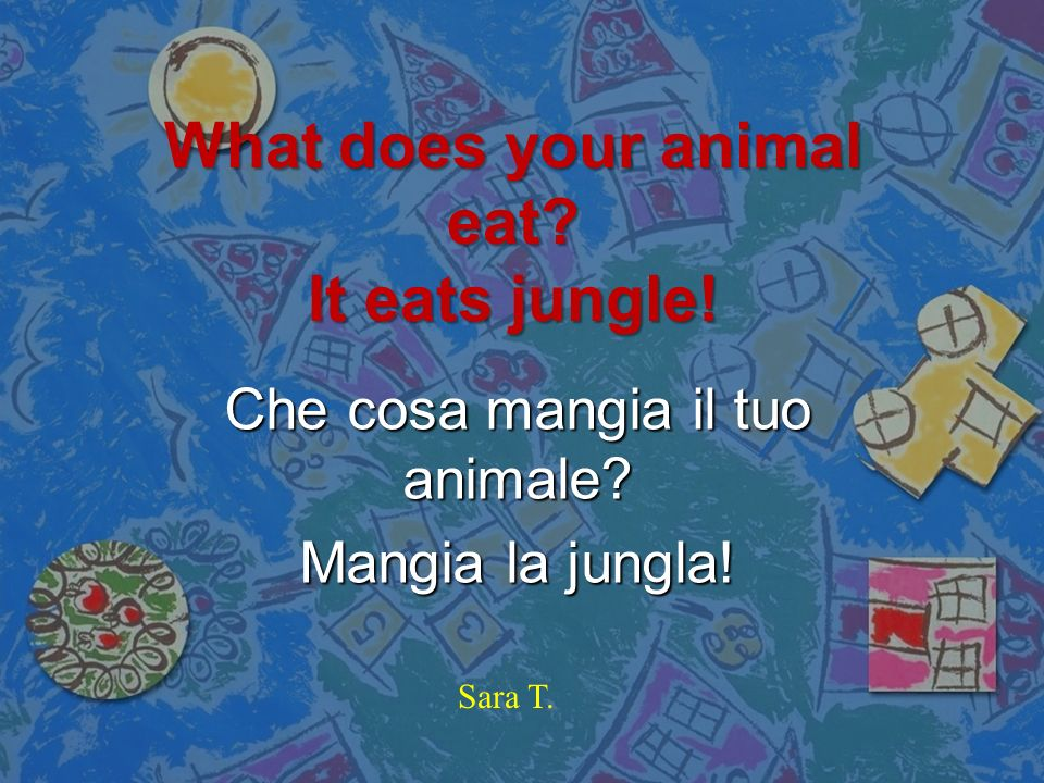 What does your animal eat It eats jungle!
