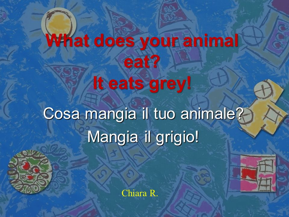 What does your animal eat It eats grey!