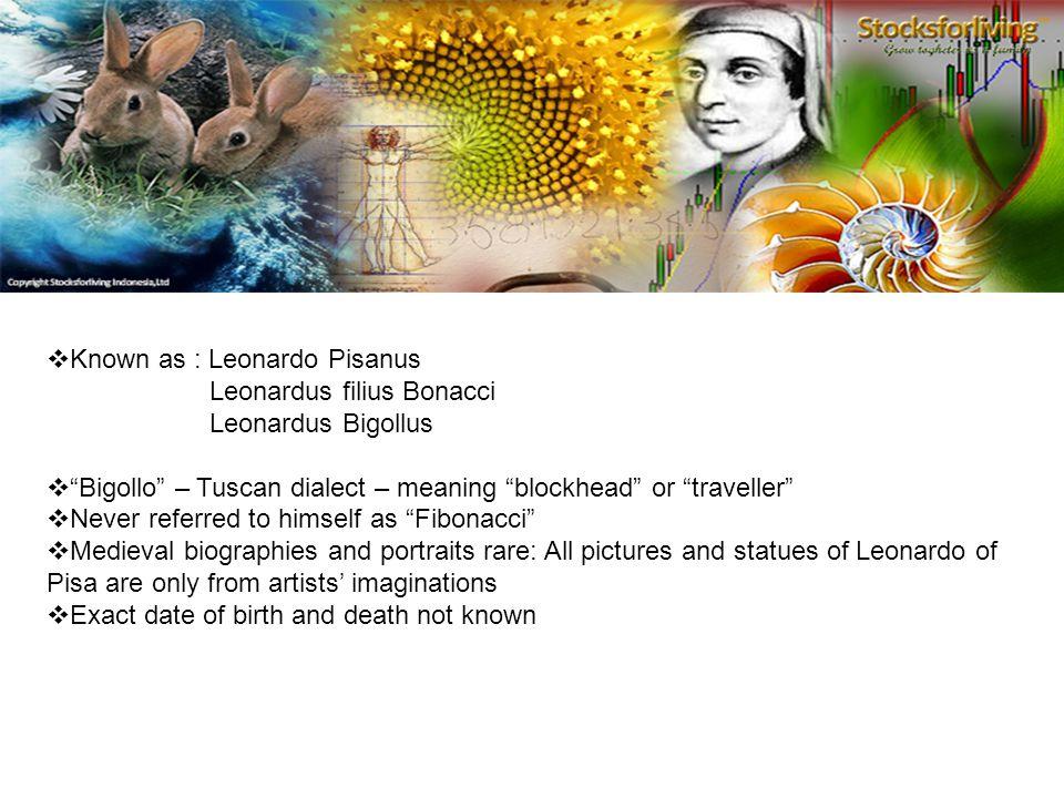 Known as : Leonardo Pisanus