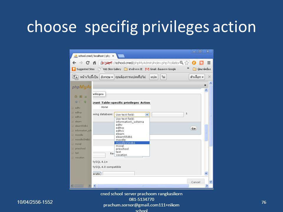 choose specifig privileges action