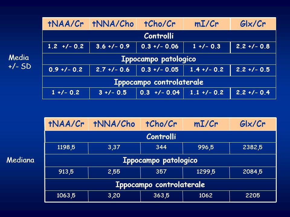 Ippocampo controlaterale Ippocampo controlaterale