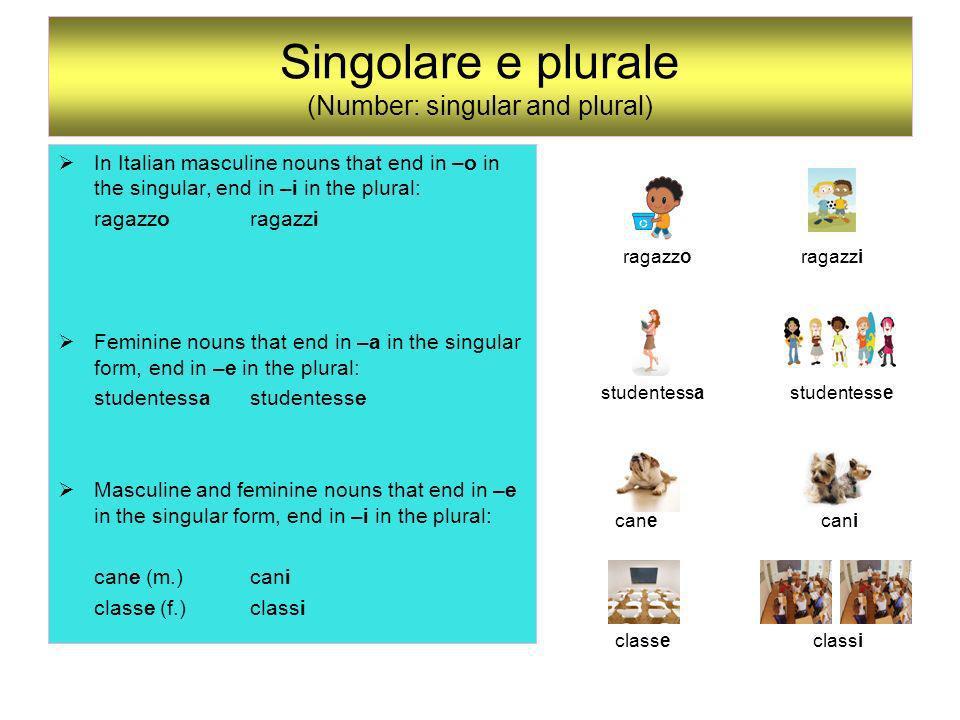 Singolare e plurale (Number: singular and plural)