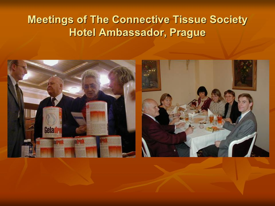 Meetings of The Connective Tissue Society Hotel Ambassador, Prague
