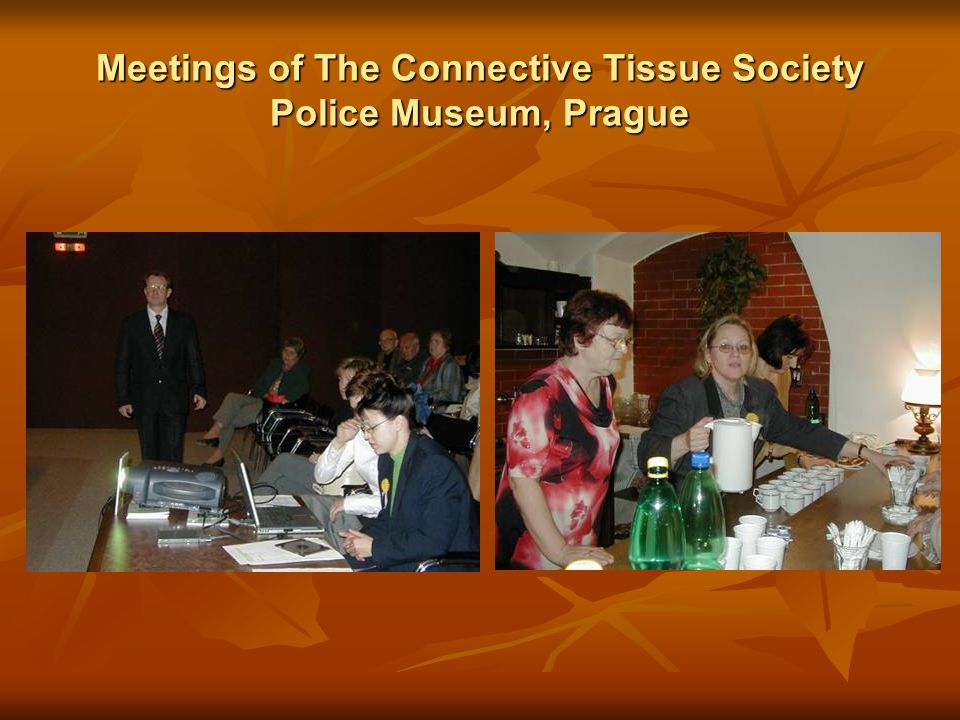 Meetings of The Connective Tissue Society Police Museum, Prague