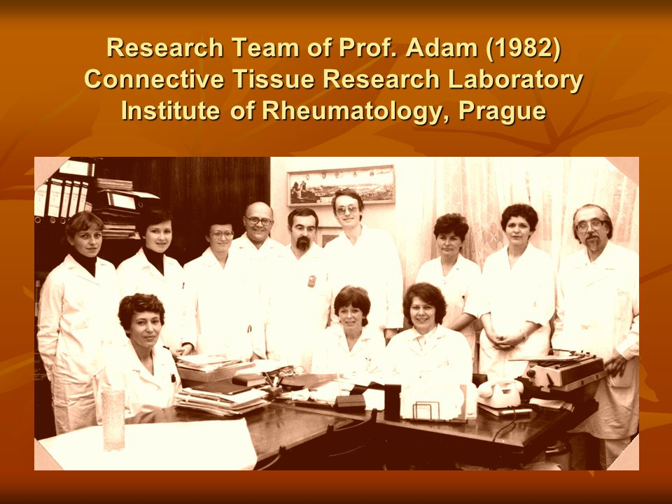 Research Team of Prof.
