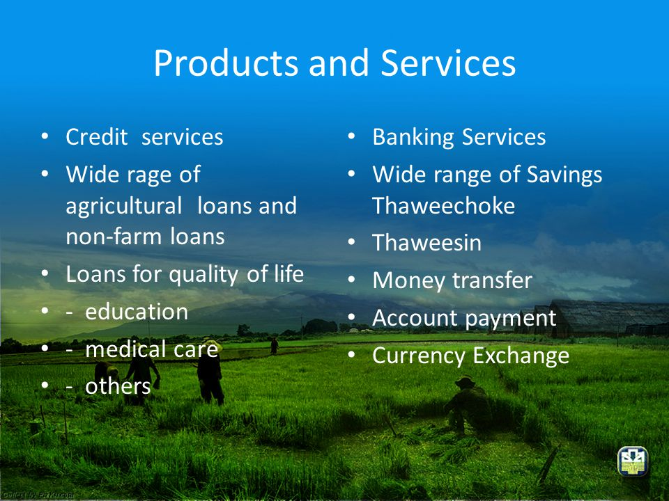 Products and Services Credit services