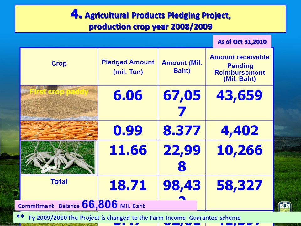 4. Agricultural Products Pledging Project, production crop year 2008/2009