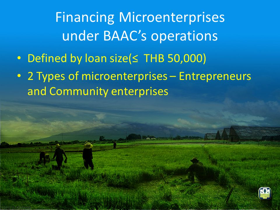 Financing Microenterprises under BAAC's operations