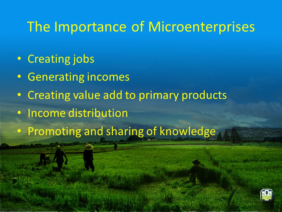 The Importance of Microenterprises