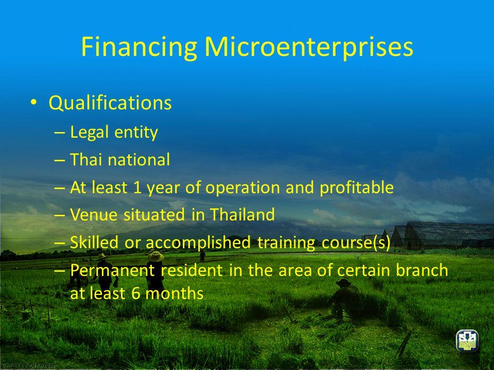Financing Microenterprises