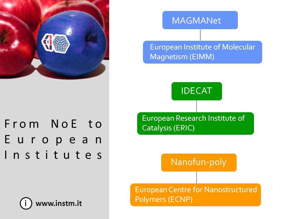From NoE to European Institutes