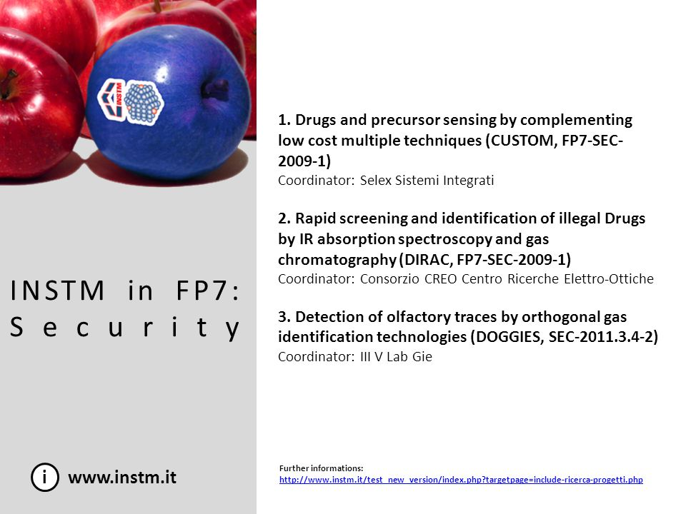 INSTM in FP7: Security i www.instm.it