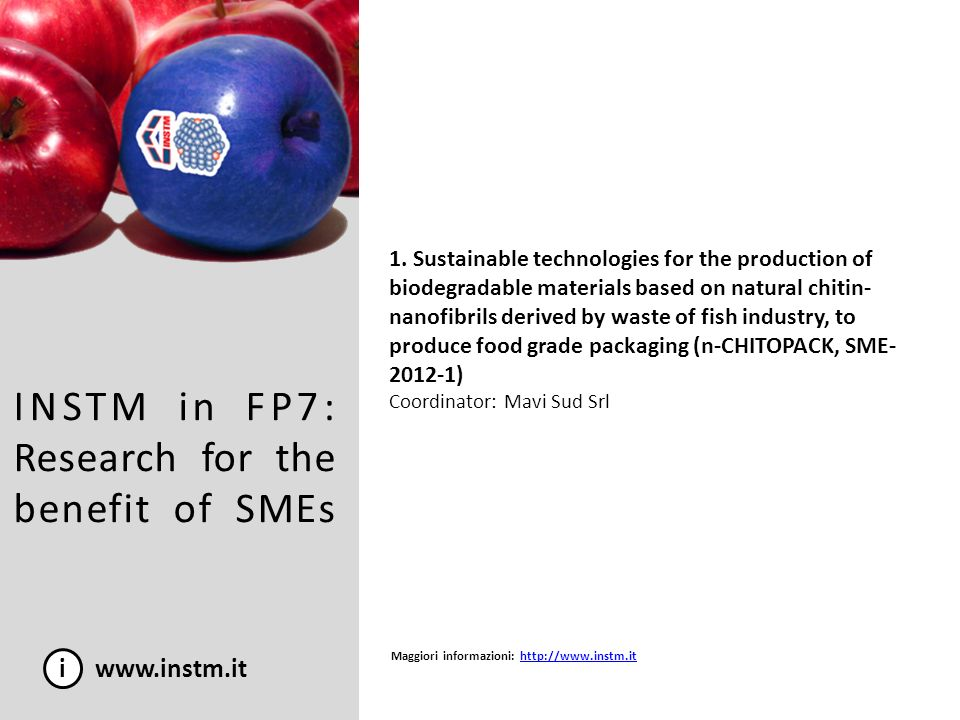 INSTM in FP7: Research for the benefit of SMEs