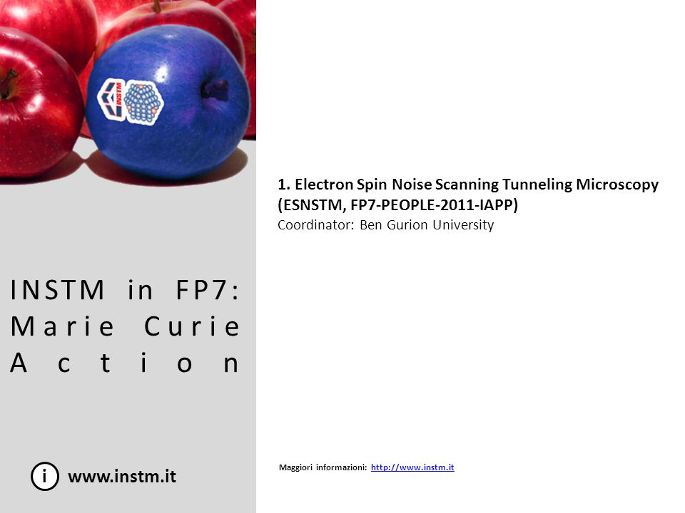 INSTM in FP7: Marie Curie Action
