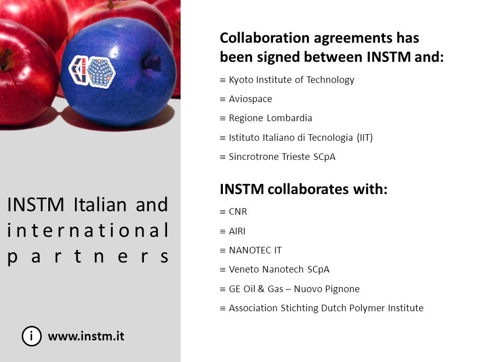 INSTM Italian and international partners