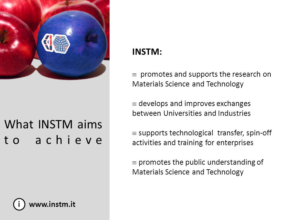 What INSTM aims to achieve