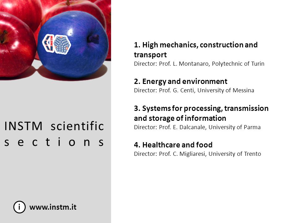 INSTM scientific sections