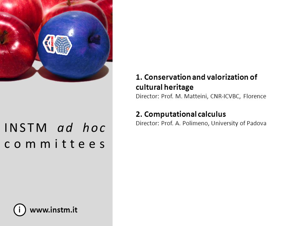 INSTM ad hoc committees