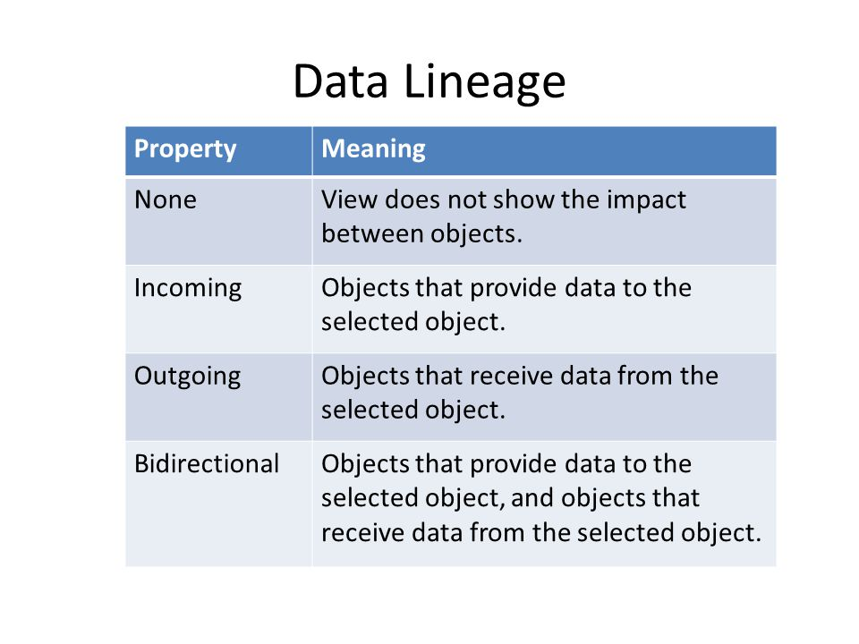 Data Lineage Property Meaning None