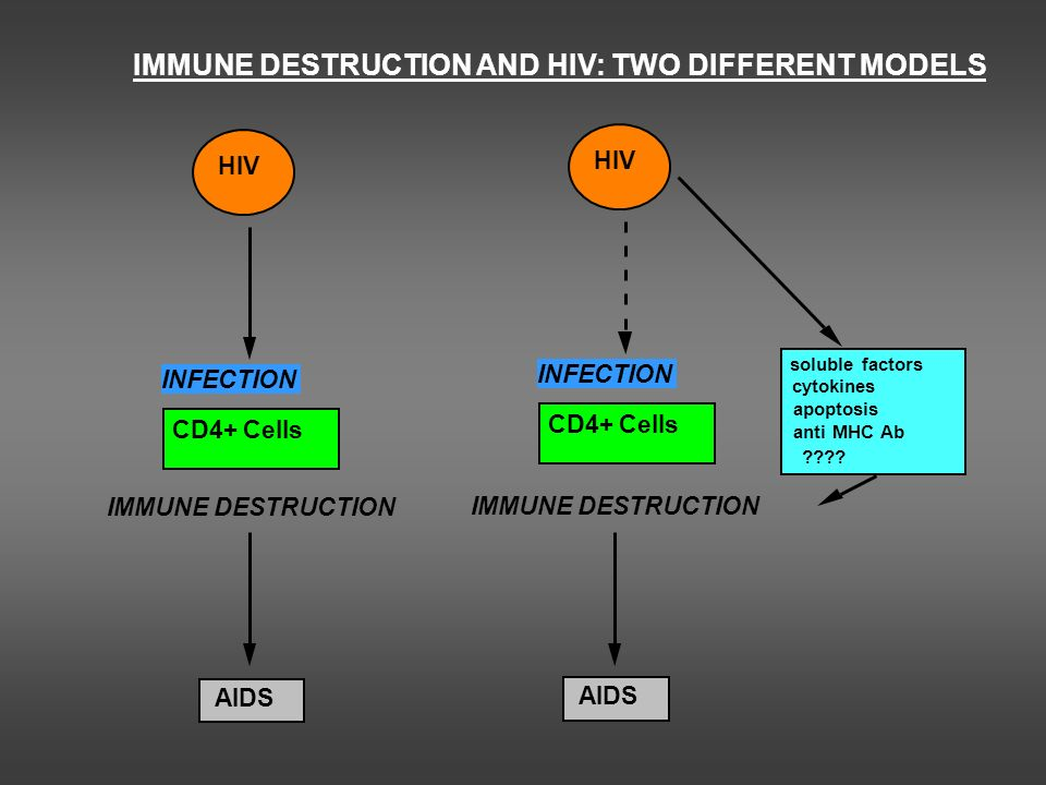 IMMUNE DESTRUCTION AND HIV: TWO DIFFERENT MODELS