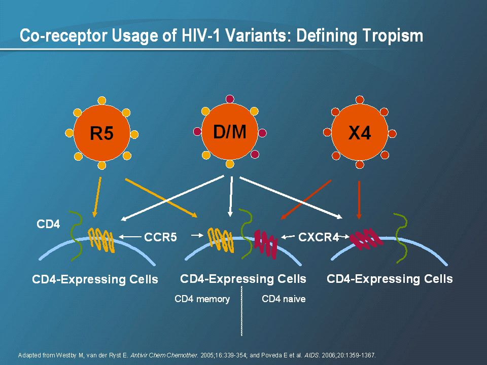 As shown in the pictorial, the R5 HIV exclusively utilizes the CCR5 co-receptor to infect the CD4+ T cell, and X4 HIV exclusively utilizes the CXCR4 co-receptor. D/M virus can enter the cell via either of the 2 co-receptors.1-3