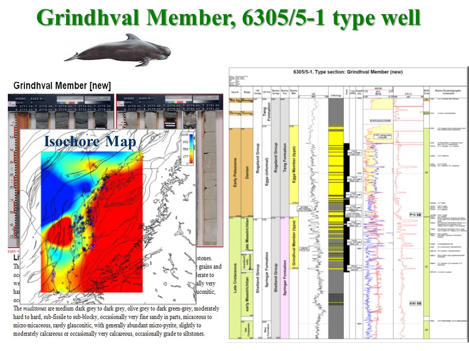 Grindhval Member, 6305/5-1 type well